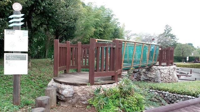 埼玉県川の博物館かわはく遊ぶ場所橋