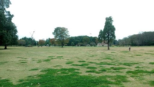 とちぎわんぱく公園の画像
