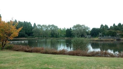 とちぎわんぱく公園ボート乗り場