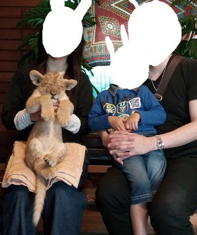 富士サファリパーク赤ちゃんライオンと記念撮影
