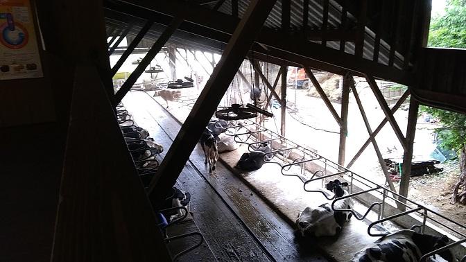 榎本牧場2階からの眺め