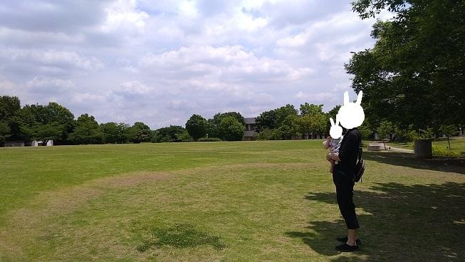 川越運動公園芝生