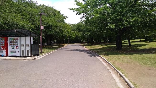 川越運動公園自転車