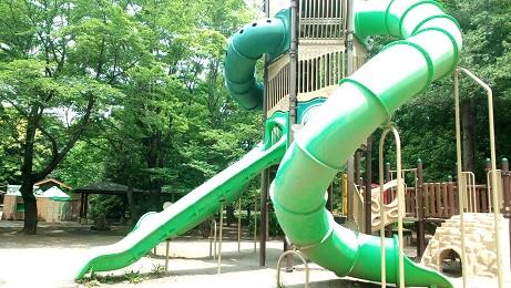 緑の一番大きな滑り台