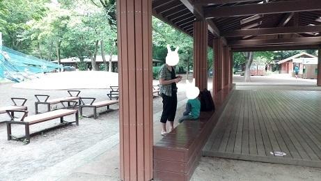 昭和記念公園こどもの森