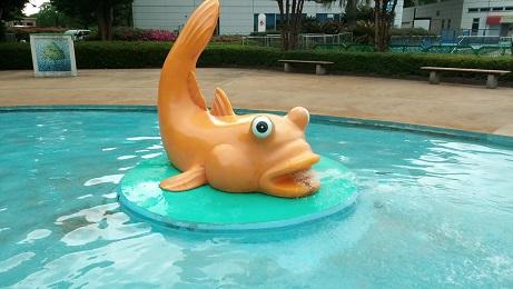 水遊びエリア魚