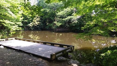 上尾丸山公園修景池