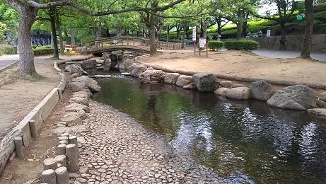 あげお丸山公園川遊び