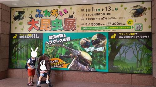 まるひろ川越夏休みイベントふれあい大昆虫展