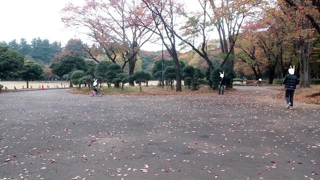 東京小金井公園サイクリングコース