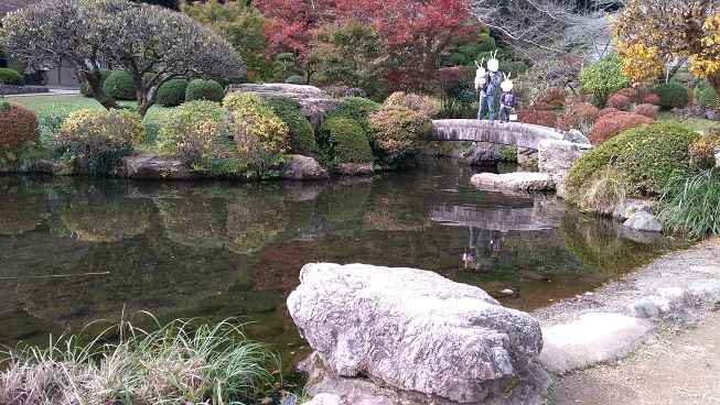 和紙の里庭園池
