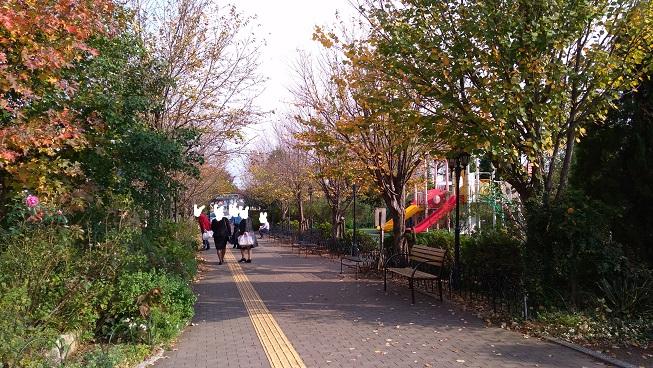 花園フォレストきれいな道