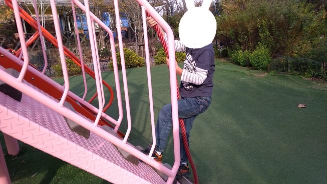 フォレスト遊具ロープ登り