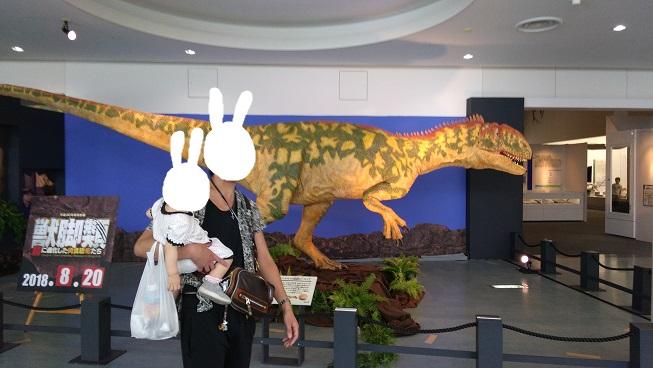 獣脚類の恐竜展示