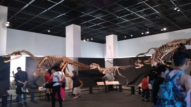 獣脚類の恐竜の化石