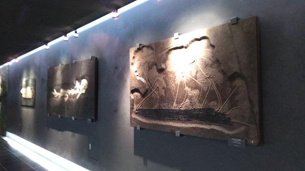通路にある化石