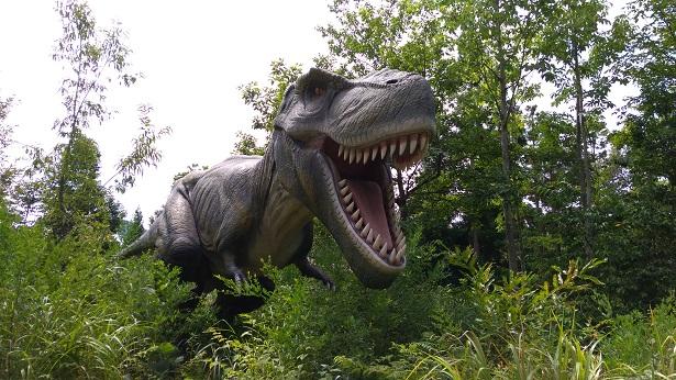 大人気のティラノサウルス