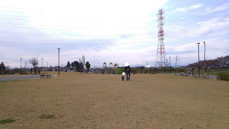 ピコア川越大きな芝生エリア