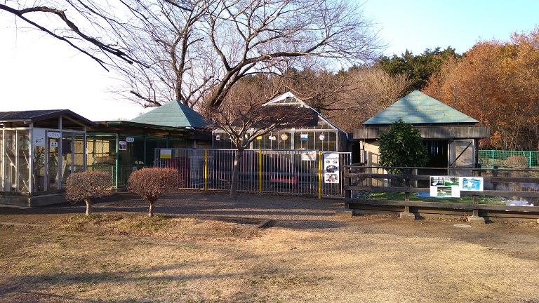 小動物園コーナー