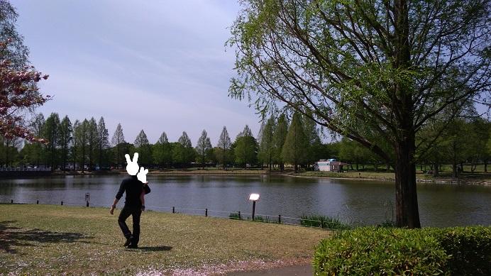 水上公園池