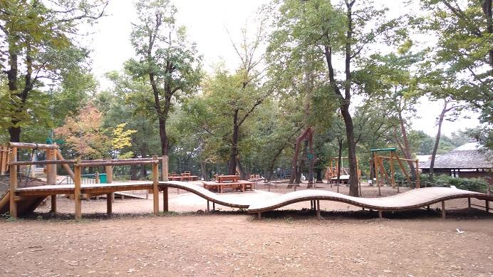 アスレチック遊具冒険の森
