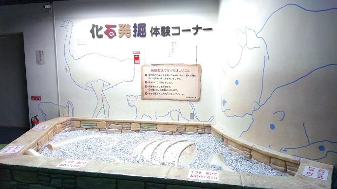 化石体験こども動物自然公園