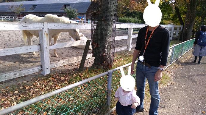 馬のコーナーこども動物自然公園