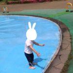 水遊び場こども動物自然公園