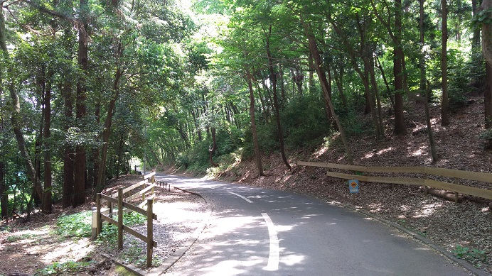 通路こども自然公園