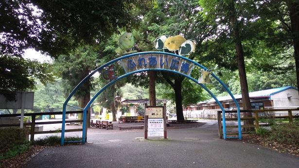 智光山公園触れ合い動物