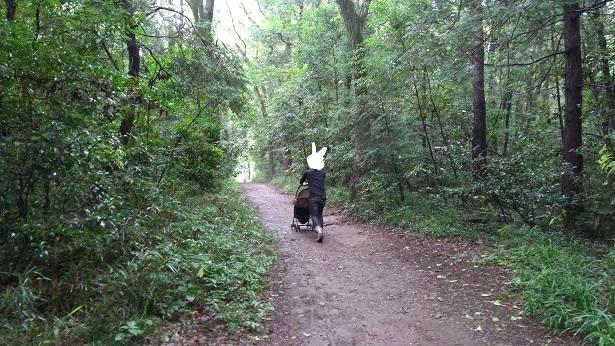 智光山公園自然いっぱいの道