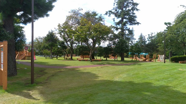 サイボクの森の芝生エリア