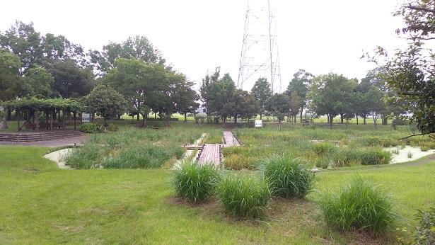 菖蒲園平成の森公園