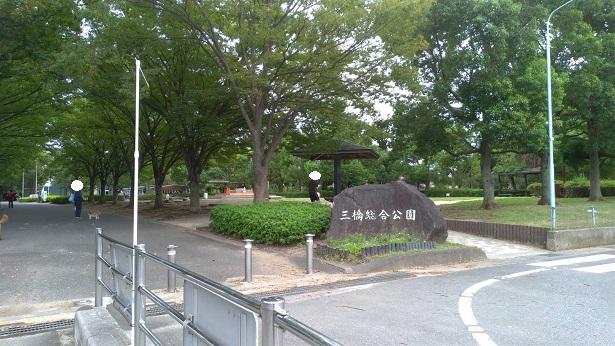 三橋総合公園入口