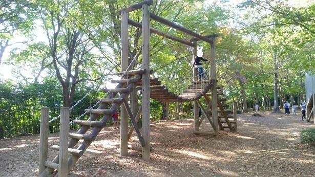 内牧公園木のつり橋