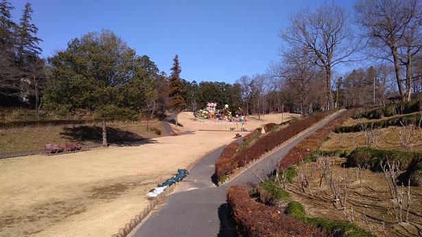 東松山の公園広い芝生エリア