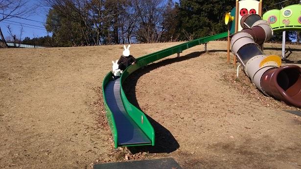 ぼたん園ローラー滑り台