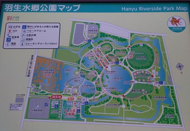 羽生水郷公園場所