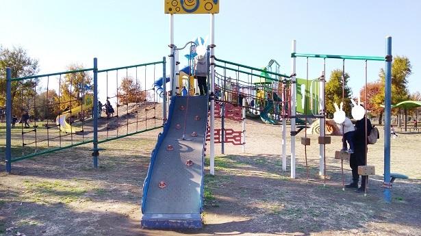 アスレチック遊具羽生水郷公園遊具