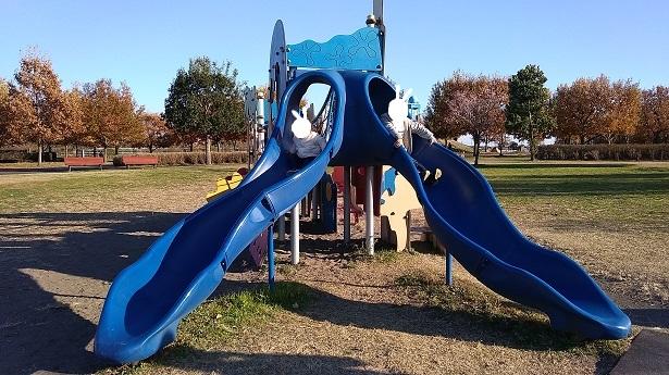 青い滑り台羽生水郷公園遊具