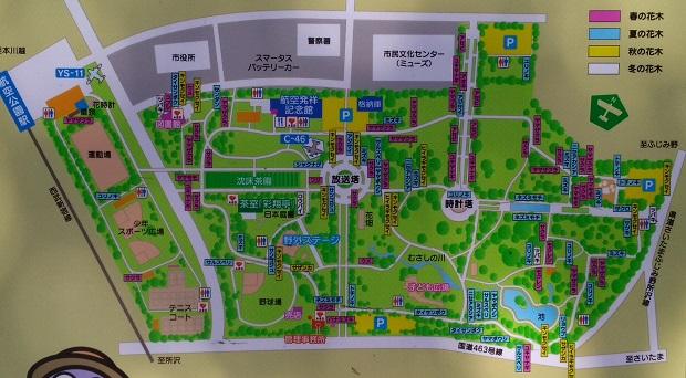 所沢航空公園地図
