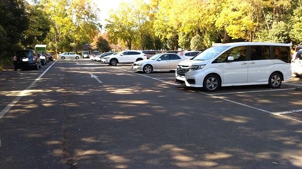 所沢航空公園駐車場