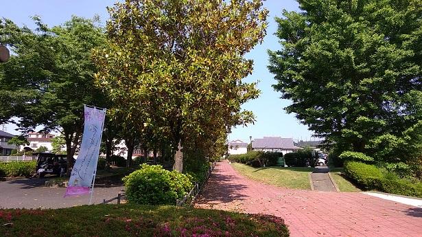 甘楽総合公園駐車場
