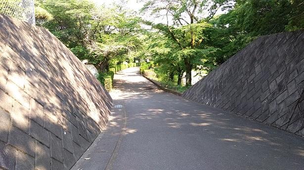 甘楽総合公園散歩