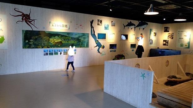 さいたま水族館特別展示
