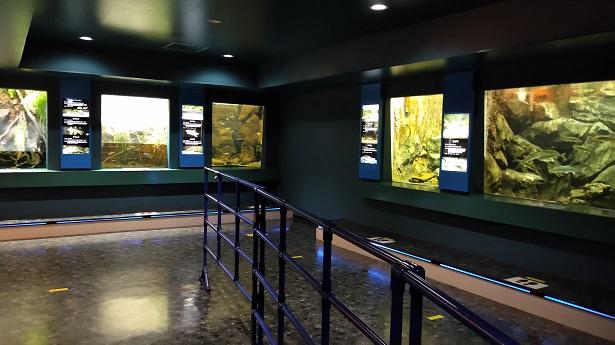 川魚水族館