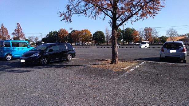 埼玉水族館駐車場