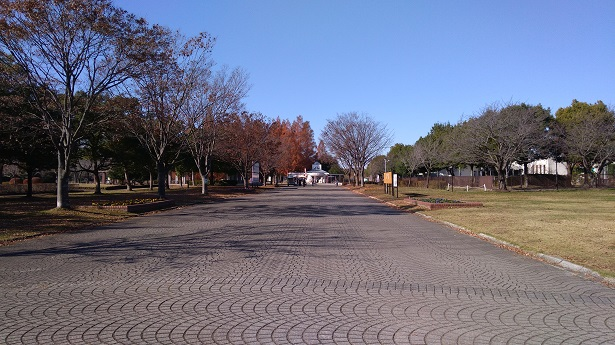 駐車場からの道