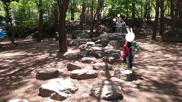 大きな石渡り